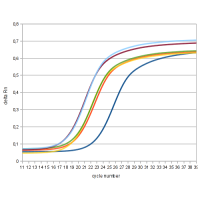 Realtime PCR Curves